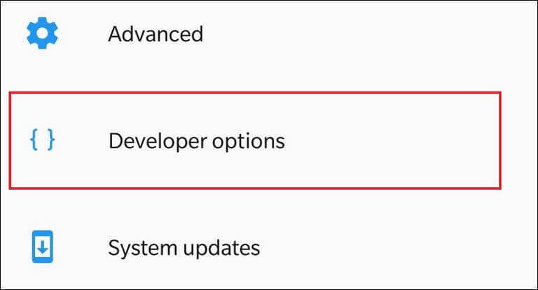 Enabled Developer Options on Google Pixel 3 and 3 XL