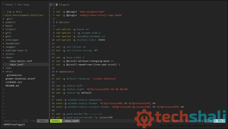 Vim Code Editor