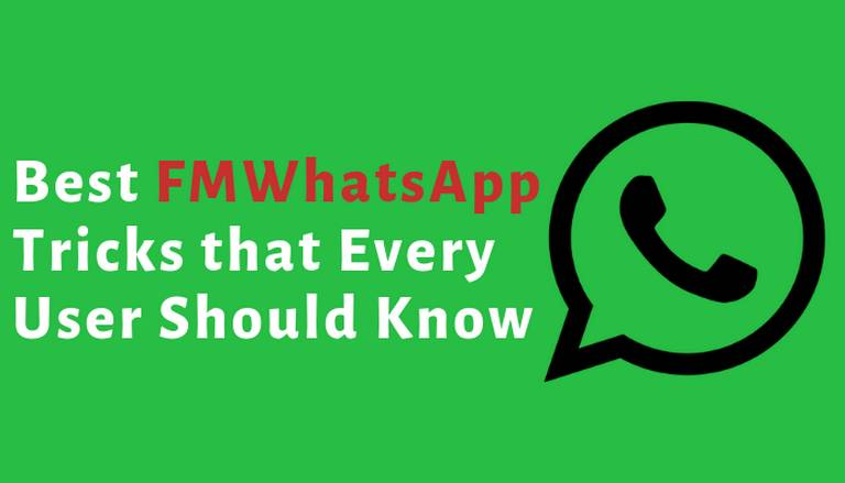 Photo of Best FMWhatsApp Tricks that Every User Should Know