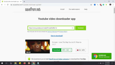 Photo of SaveFrom.net – Best and Fastest Youtube Video Download site