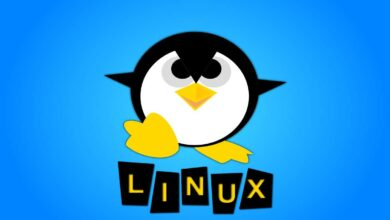 Photo of Which Linux VPS server log files you should monitor