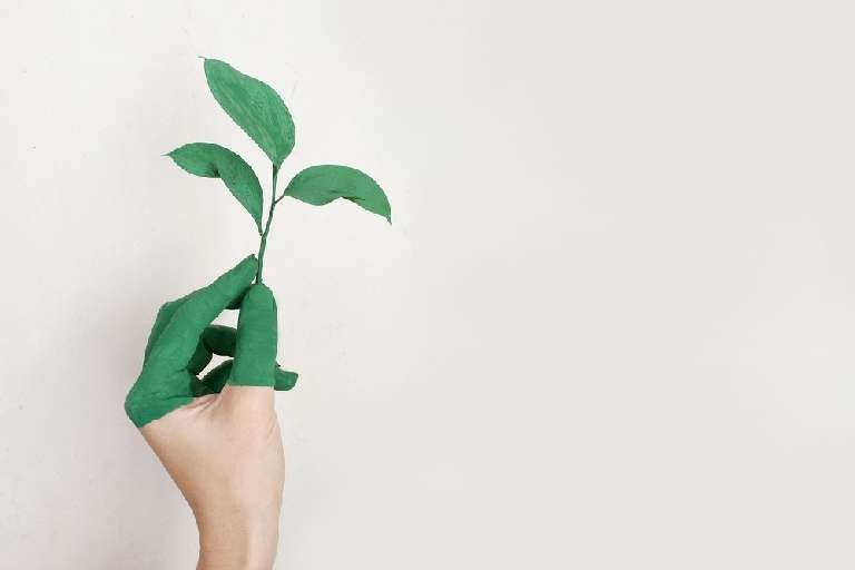 Ideas for sustainable ventures