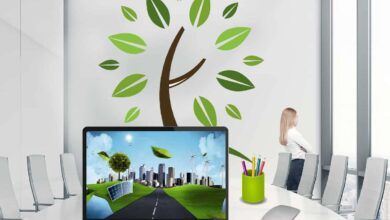 Photo of 11 Best Sustainable Entrepreneurship Ideas