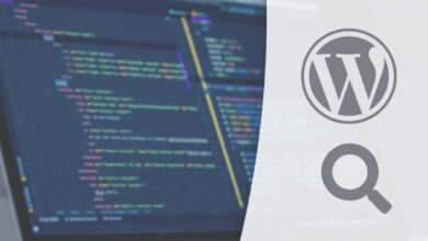 Photo of Learn to Add a Search Bar to the WordPress Site